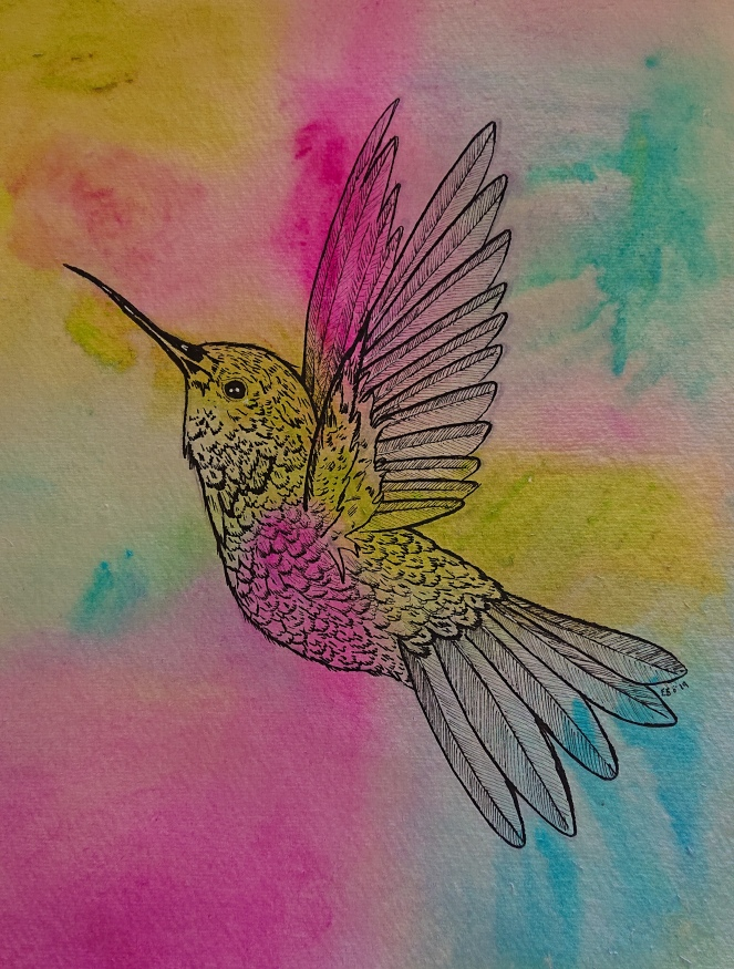 Line drawing of a hummingbird in flight, on a background of blended bright colours.
