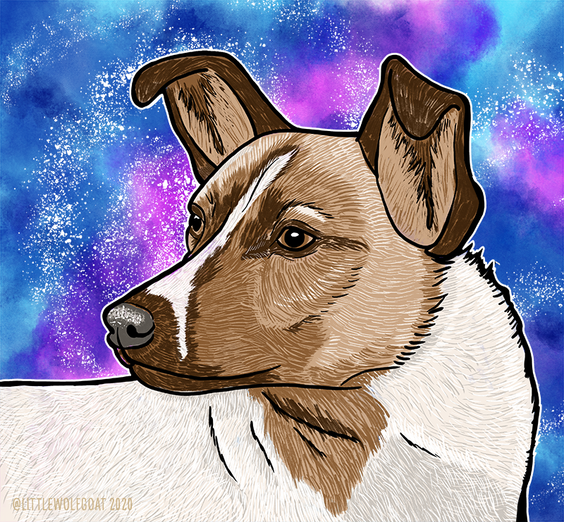 A digital drawing of Laika, the Soviet space dog.